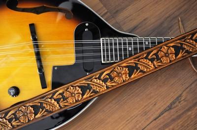 Pas na mandolinu