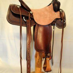 Cowhorse TB